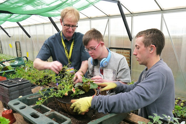 horticultural therapy for learning disability adults